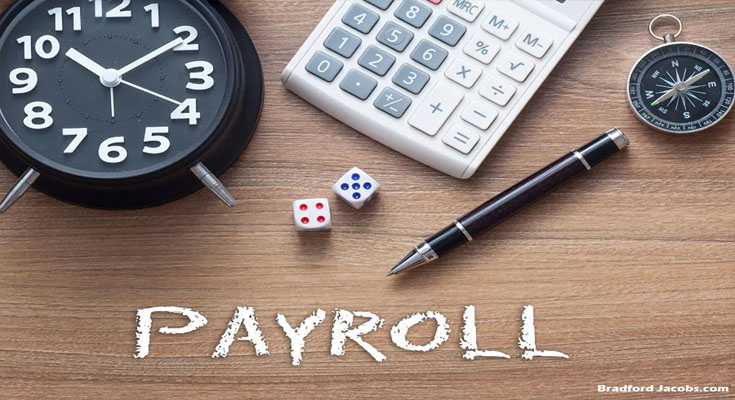 Growing Popularity of Online Payroll Solutions